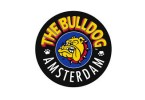 The Bull Dog