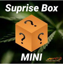 Werners Head Shop Suprisebox - Mini