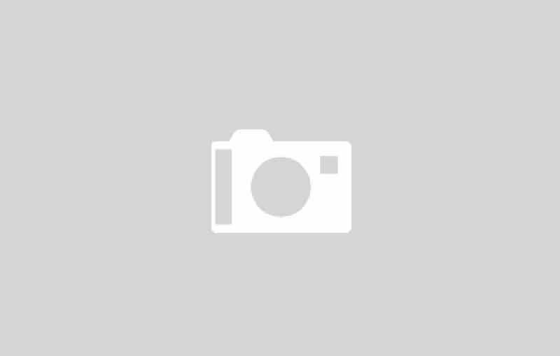 Schleuderascher schwarz/weiß gepunktet